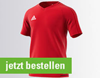 ADIDAS Training Jerseys